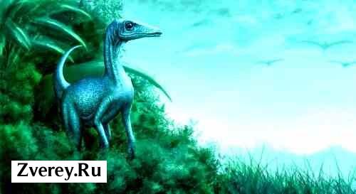Маленький динозавр
