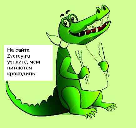 Что крокодил ест