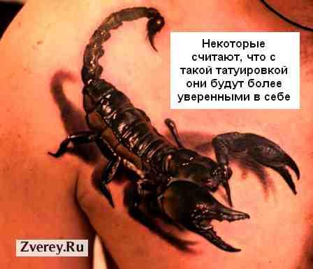 Татуировки скорпиона опасные