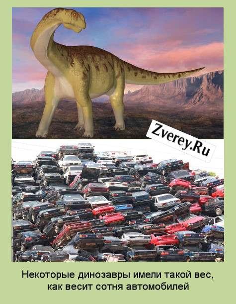 Динозавр и автомобили