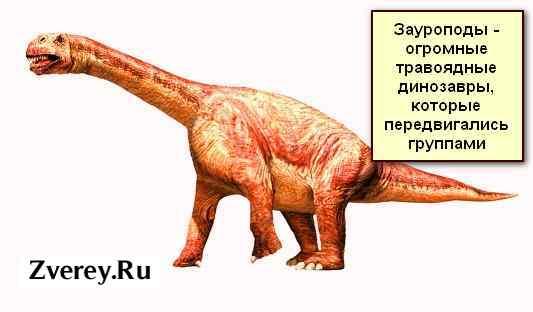 Большой травоядный динозавр